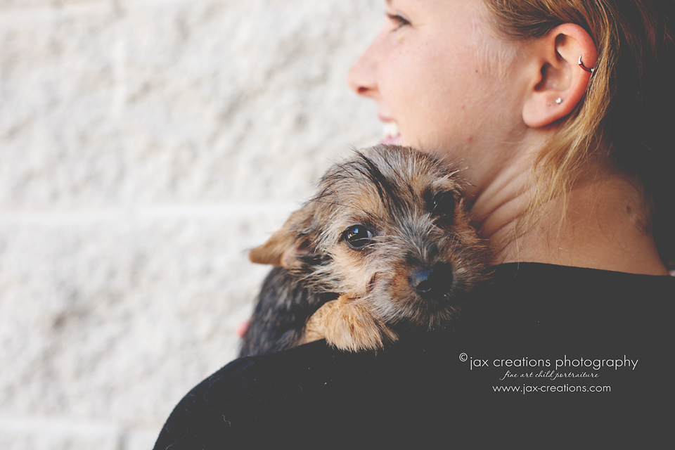 Jax Creations Photography, Pet photography, Fort Collins Colorado