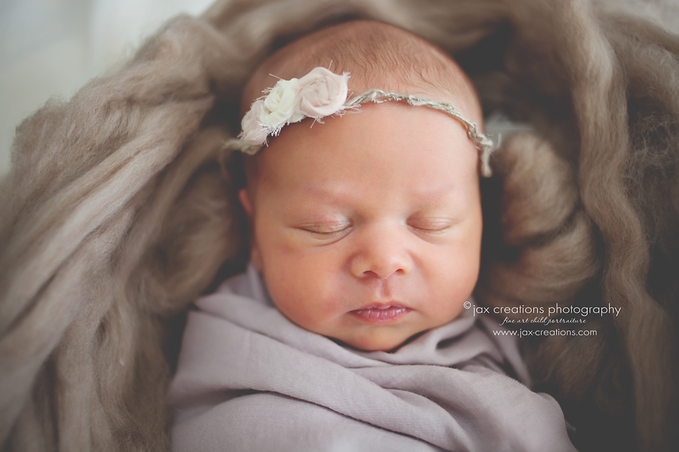 Jax Creations Photography, best newborn photographer, Colorado, Fort Collins, baby