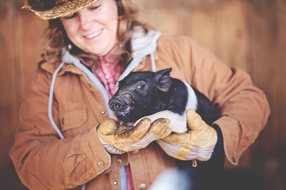 Jax Creations Photography, Colorado family photographer, farm, laughing buck farm